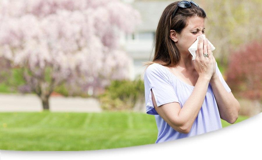 Was ist eine Pollenallergie | Ihr Ratgeber Pollenallergie
